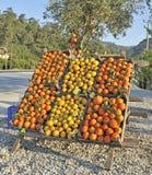 Sinaasappelen en citroenen voor verkoop stock afbeelding