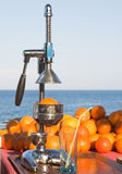 Sinaasappelen en handpers Stock Foto
