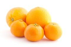 Sinaasappelen en mandarijnen Royalty-vrije Stock Foto