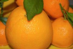 Sinaasappelen en mandarijnen op een schotelclose-up stock foto's