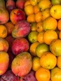 Sinaasappelen en mango's Stock Fotografie