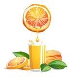 Sinaasappelen en sap royalty-vrije illustratie