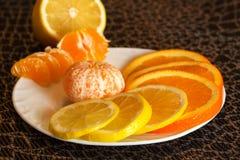 Sinaasappelen, mandarin en citroen Royalty-vrije Stock Afbeeldingen