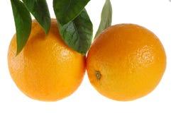 Sinaasappelen met bladeren Stock Foto's