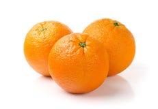 Sinaasappelen op Witte Achtergrond Stock Afbeeldingen