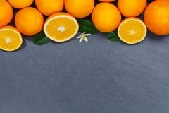 Sinaasappelen oranje vruchten lei copyspace hoogste mening royalty-vrije stock afbeeldingen