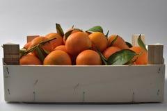 Sinaasappelenkrat Stock Afbeeldingen