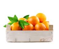 Sinaasappelenvruchten in een houten doos royalty-vrije stock foto