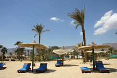 Sinai beach. Stock Photos