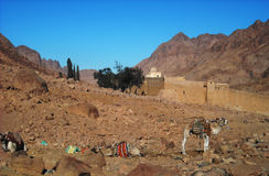 Sinai Royalty Free Stock Images