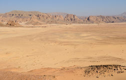 Sinai Desert. The barren central Sinai desert Stock Photos