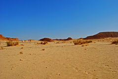 Sinai desert  with the blue sky Royalty Free Stock Image