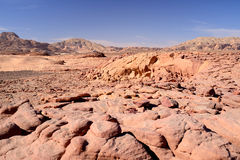 Sinai desert Stock Photo