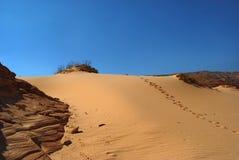 Sinai desert with footprints Stock Photo