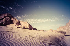 Sinai desert landscape Stock Photography