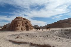 Sinai desert with sand and sun under blue sky in december with p Stock Photo