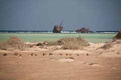 Sinai desert and sea beach with sand and sun and ship wracked.  stock photography