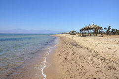 Sinai seashore. Royalty Free Stock Image