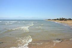 Sinai seashore. Royalty Free Stock Image