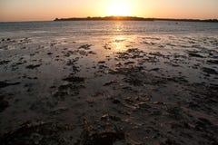 Sinai woestijn en overzees strand met zand en zon en golven Royalty-vrije Stock Foto