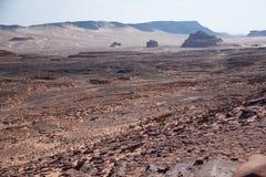 Sinai woestijn met zand en zon onder blauwe hemel in december Royalty-vrije Stock Foto's