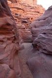 Sinai woestijn met zand en zon onder blauwe hemel in december bij rood Royalty-vrije Stock Afbeelding