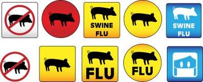 Sinais da gripe dos suínos Fotografia de Stock