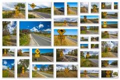 Sinais de estrada australianos Foto de Stock Royalty Free