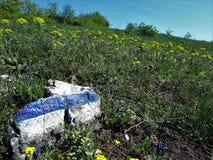 Sinal azul em uma fuga de caminhada nos montes Fotografia de Stock