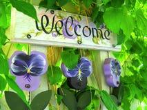 Sinal bem-vindo do Pansy Foto de Stock