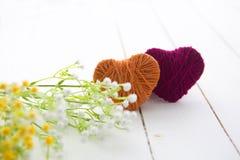Sinal com as flores da árvore da mola Imagens de Stock