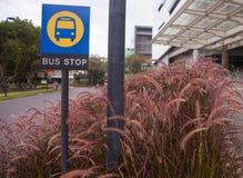 Sinal da parada do ônibus Imagem de Stock Royalty Free