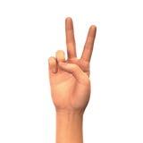 Sinal da paz ou da vitória, mão isolada no fundo branco Fotos de Stock Royalty Free