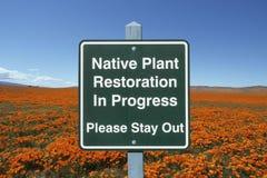 Sinal da restauração da planta nativa com papoilas Fotografia de Stock