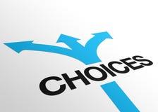Sinal das escolhas da perspectiva Imagens de Stock Royalty Free