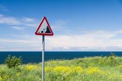 Sinal de aviso da borda do precipício Penhasco do mar do perigo escondido pela grama Foto de Stock Royalty Free