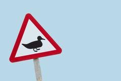Sinal de aviso da estrada do pato com espaço da cópia Imagens de Stock Royalty Free