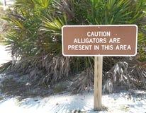 Sinal de aviso do jacaré em Florida Imagens de Stock Royalty Free