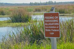 Sinal de aviso do jacaré em Savannah National Wildlife Refuge em Hardeeville, Jasper Coun fotos de stock royalty free