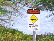 Sinal de aviso do tubarão Fotografia de Stock