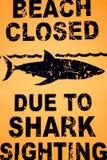 Sinal de aviso: Fechado da praia devido à observação do tubarão. ilustração stock