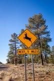 Sinal de aviso fora de Grand Canyon Imagens de Stock Royalty Free