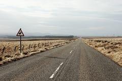 Sinal de aviso para cervos selvagens em uma estrada reta longa na ilha de Lewis, Escócia fotografia de stock royalty free