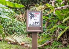 Sinal de aviso ridículo para cocos de queda Fotografia de Stock Royalty Free