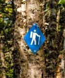 Sinal de caminhada azul Fotografia de Stock