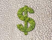Sinal de dólar da grama em fundo rachado da terra Foto de Stock Royalty Free