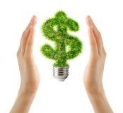 Sinal de dólar feito da grama como o bulbo nas mãos fêmeas Foto de Stock Royalty Free