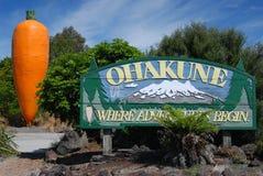 Sinal de estrada de Ohakune com montagem Ruapehu Fotografia de Stock