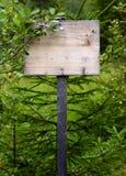 Sinal de madeira coberto de vegetação Fotos de Stock Royalty Free