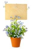 Sinal de madeira com flores/placa vazia para seu texto Foto de Stock